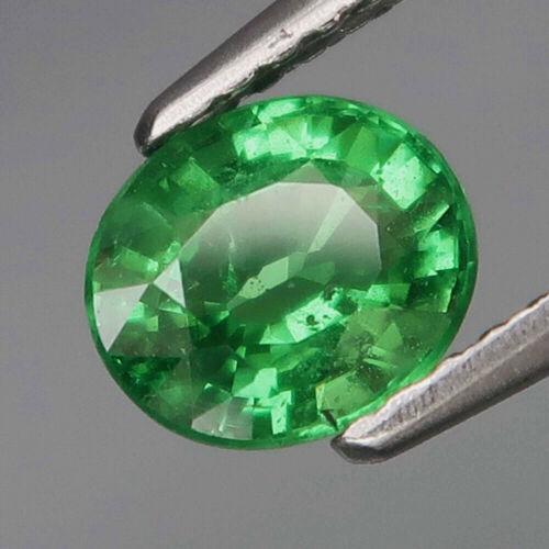 1.05Ct. Natural Top Green Tsavorite Garnet Tanzania