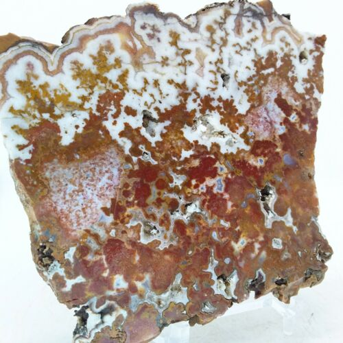 Moroccan Agate, slab, cabbing rough, lapidary, gemstone, pink, red, #R-3324