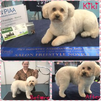 Tina's mobile dog grooming and hydrobath service