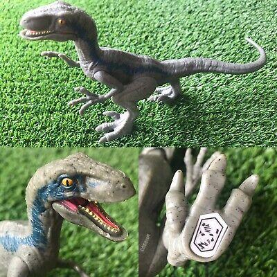 Jurassic World Blue Dinosaur Velociraptor Toy Action Figure Raptor Park