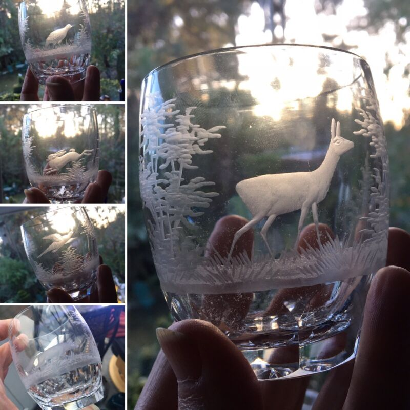RARE 5 WHISKY TUMBLER ROWLAND WARD MOSER QUEEN LACE ENGRAVED HUNT ANIMALS 🎁