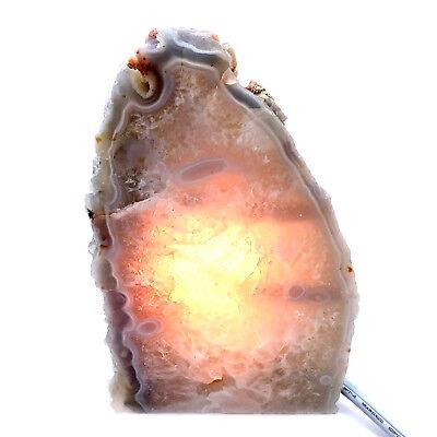 Rock Lamp Agate Geode Lamp Natural Display Specimen Free USA Shipping AL39
