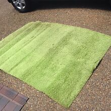 Lime green shag rug Grays Point Sutherland Area Preview