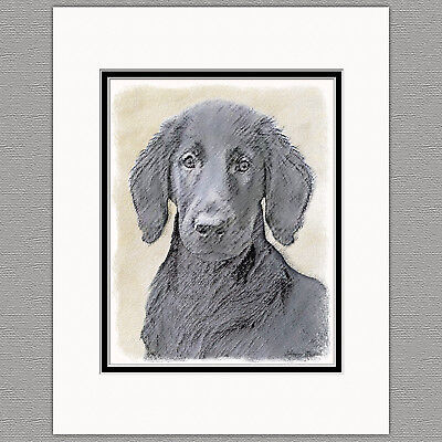 Flat-Coated Retriever Dog Original Art Print 8x10 Matted to 11x14