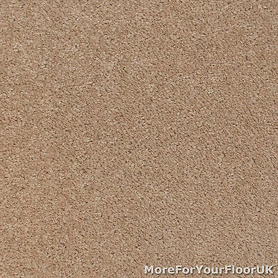 Natural Beige Feltback Carpet - Cheap Lounge Bedroom