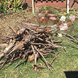 FREE FIREWOOD! Lane Cove North Lane Cove Area Preview