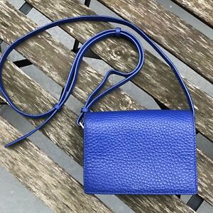 Aritzia Auxiliary Calisch Small Leather Purse Blue