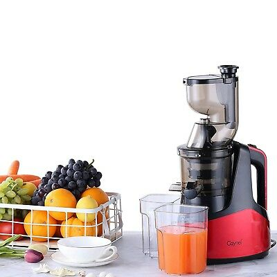 New Lagging Masticating Juicer Cold Press Extractor Fruit Vegetable Red