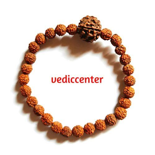 5 Mukhi Rudraksh Rudraksha Bead Bracelet Wrist Band Stretchable
