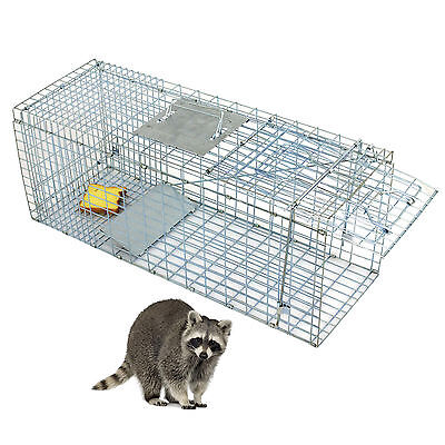 Humane Animal Trap 32x12x12 Steel Cage Live Rodent Control Skunk Rabbit Opossum Home & Garden