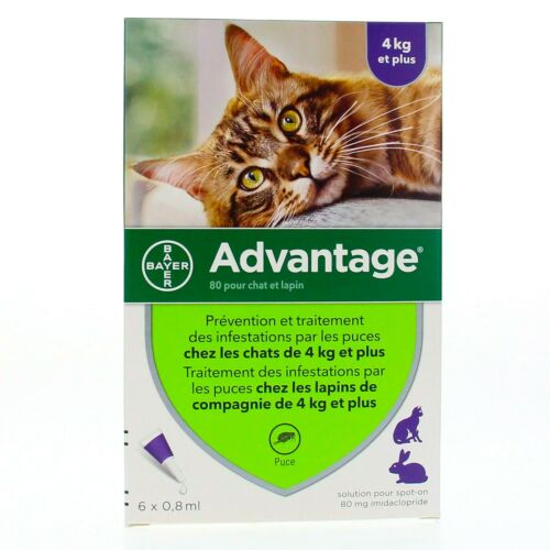Advantage purple for cats over 9 pounds, 6 packs - EXP 2025
