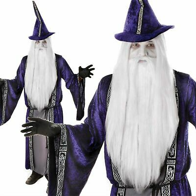 Mens Purple Wizard Costume Gandalf Dumbledore Halloween Fancy Dress Adult Outfit
