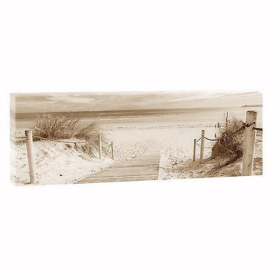 Weg zum Strand Bild Wandbild Leinwand Poster Strand Meer 150 cm* 50 cm 624se