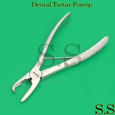 Dental Tartar Forcep 4.5 Calculus Remover Tooth Scraper Veterinary Instrument