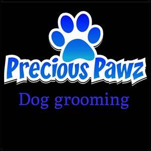 Precious Pawz Dog Grooming Singleton Rockingham Area Preview