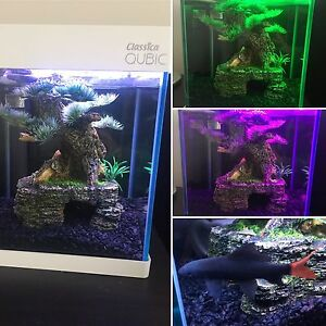 Fish tank including fish and decor- 8.5L LED multicoloured light Cranbourne East Casey Area Preview