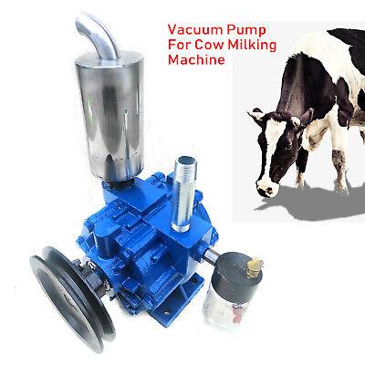 Vacuum Pump For Cow Milker Milking Machine 220 Lmin Tank Stainless W Bucket Us
