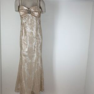 Ignite Evenings by Carol Lin Woman's dress size 14 long formal  lace New $180