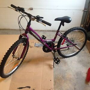 """24"""" Bicycle in  Excellent Condition"""