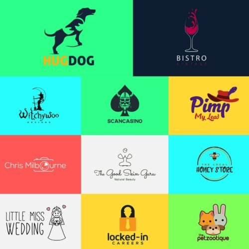 PROFESSIONAL CUSTOM LOGO DESIGN WITH SOURCE FILE - UNLIMITED REVISIONS