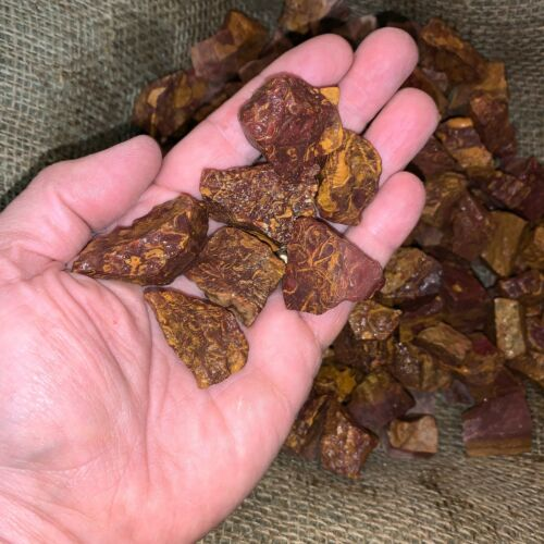 500 Carat Lots of Coquina Jasper Rough - Plus a FREE faceted Gemstone- Very Nice
