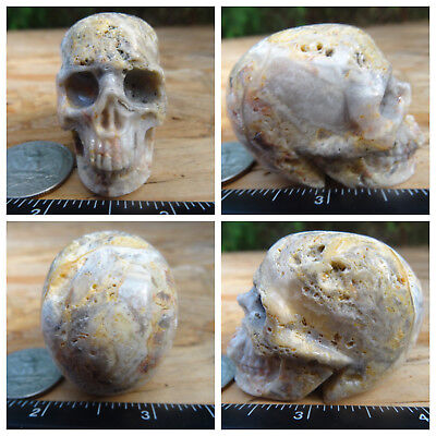 """2.0"""" Crazy Lace Agate Skull Carved Stone 3.0oz 85.6g Crystal Healing Realistic"""