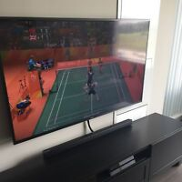 Professional TV Mounting and Installation Services