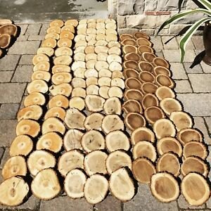 Wood slices - wood rounds - wood centrepieces - wood coasters