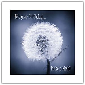 Birthday Greetings Card - Dandelion Make a Wish Flower Seed Head Clock