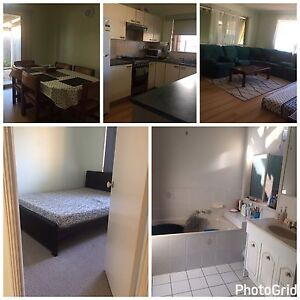 room for rent Runcorn Brisbane South West Preview