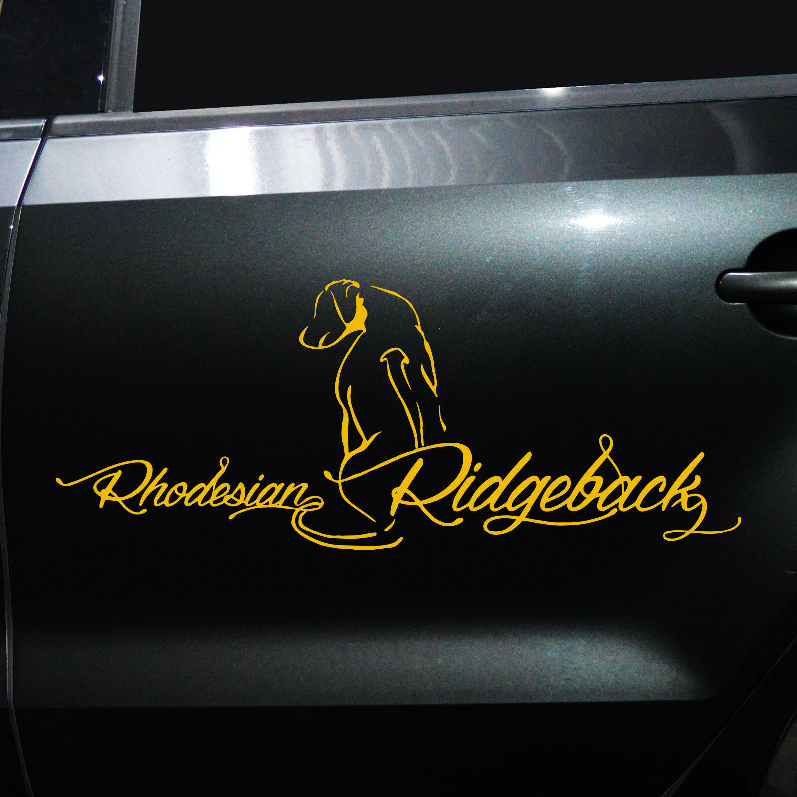 autoaufkleber rhodesian ridgeback m2 aufkleber f rs auto. Black Bedroom Furniture Sets. Home Design Ideas
