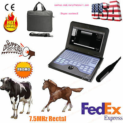 Vet Veterinary Portable Ultrasound Machine For Cowhorseanimalrectal Probe