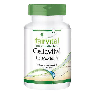 Antioxidantien-Komplex Cellavital - 120 Kapseln, hochdosiert   VEGI   fairvital