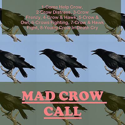 Cd Game Call  Crow Hunting  Multipal Most Effective Crow Calls Play   Shoot Aa