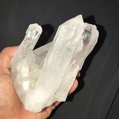 EXTRA Large Quartz Point Crystal Cluster ~ (1) Pound Specimen - Very Nice!!