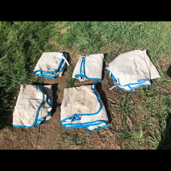 Horse Gear - Rugs SOLD PP   Horses