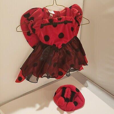 Koala Kids Ladybug Outfit Costume 6-9 Months Baby Girl Halloween Dress Hat Wings