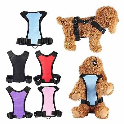 Best Dog Seat Belts and Car Harnesses for Puppy (Best Dog Guard For Car)
