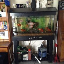 For sale 3ft fish tank Wallsend Newcastle Area Preview