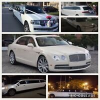 BRAMPTON WEDDING STRETCH LIMOUSINE LIMO RENTAL 416-407-7355