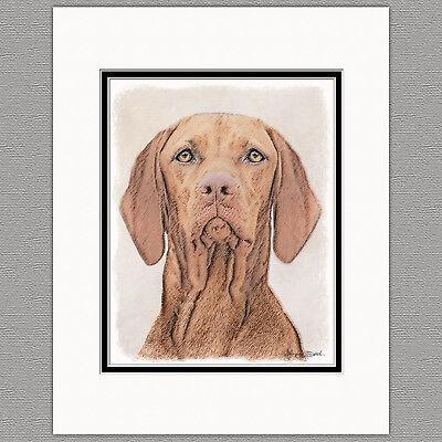 Vizsla Hungarian Dog Original Art Print 8x10 Matted to 11x14