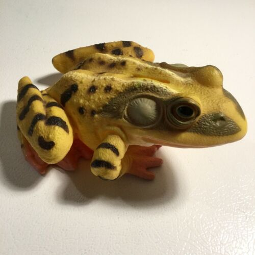 VHTF Vintage Realistic Frog Piggy Bank - Hard Plastic - Rana Amphibian - 1993
