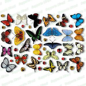 25 Realistic Butterfly & 17 Ladybird Window Clings Glass Stickers Butterflies