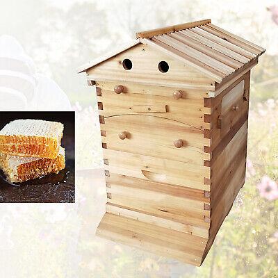 Bee Hive House Auto Honey Frames Beehive Beekeeping Brood Wooden Box Hotsale