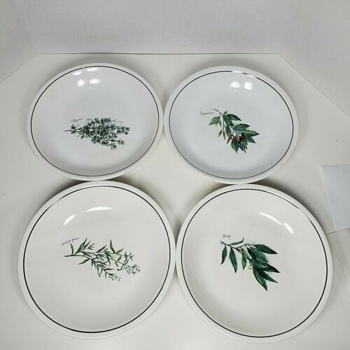 Williams Sonoma Herbs set of 4 Plates salad pasta Green Black Portugal