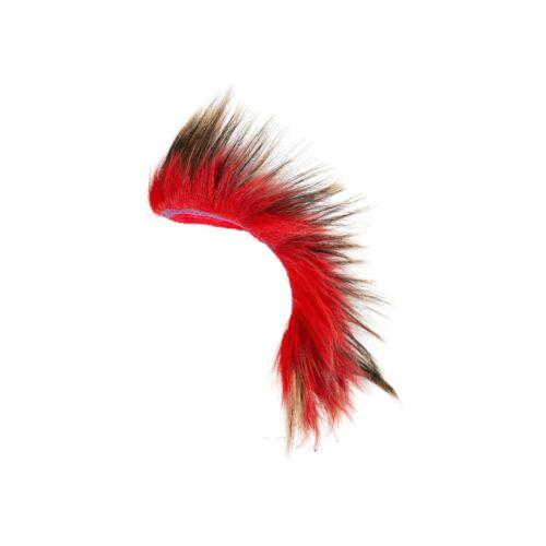 Plains Porcupine Hair Roach