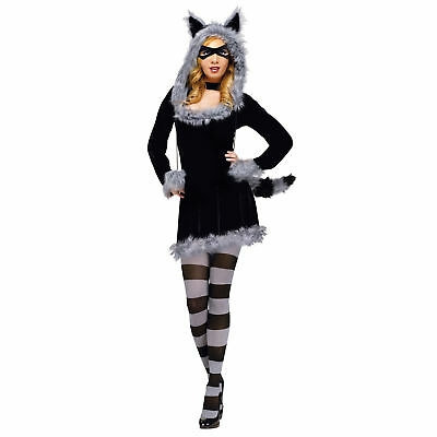 Raccoon Costume For Women (Fun World Women's Racy Raccoon Costume |)