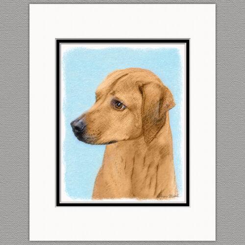 Rhodesian Ridgeback Dog Original Art Print 8x10 Matted to 11x14