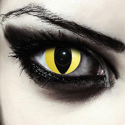 Gelbe farbige Katzenaugen Kontaktlinsen für Halloween Kostüm: Yellow Cateye