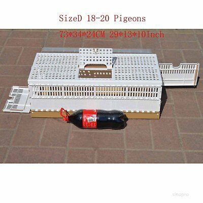 Plastic Pigeon Training Transport Basket folding Collapsing cages 73cm 20pigeons